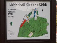 Dresden-Weixdorf-027
