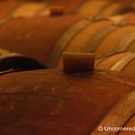 Oak Barrels at Bodega Familia Schroeder - Patagonia, Argentina