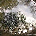 Fisheye of Chandigarh's Rock Garden - India