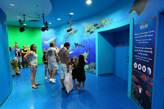 Sea life aquarium entry way az mills mall tempe arizona Arizona mills mall aquarium