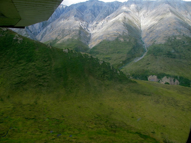 Green Slopes in the Brooks Range
