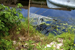 Shopping cart in canal