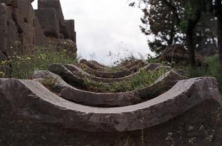 Delphi (XXXIV)