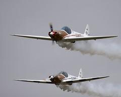 Shoreham Airshow 2010