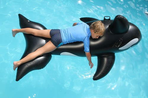 Boy on inflatable orca, wearing UV protective bathing clothes