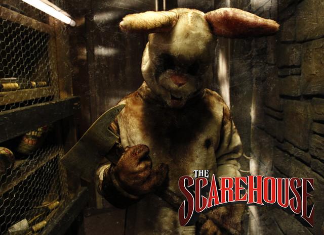 scarehouse bunny flickr photo sharing