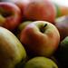 apples by Jon Osborne 1