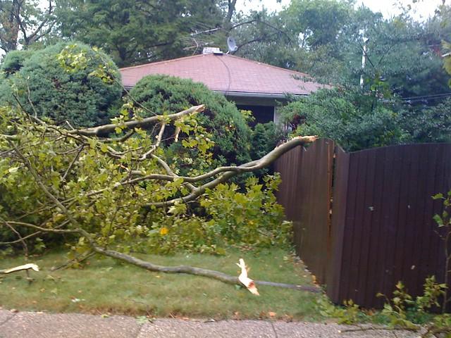 Staten Island Storm Damage