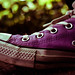 The Return of the Purple Converse