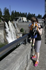 showing sequoia the dam
