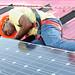 Solar Nasheed: Hi-Res Press Photos