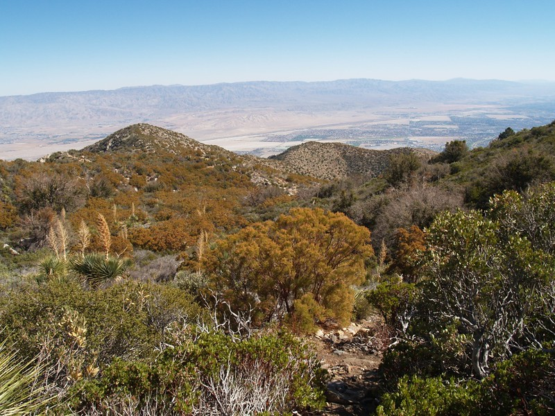 View toward Palm Springs from high up above Flatrock on the Skyline Trail