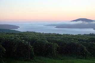 Sunrise overlooking a vineyard | by visit~fingerlakes