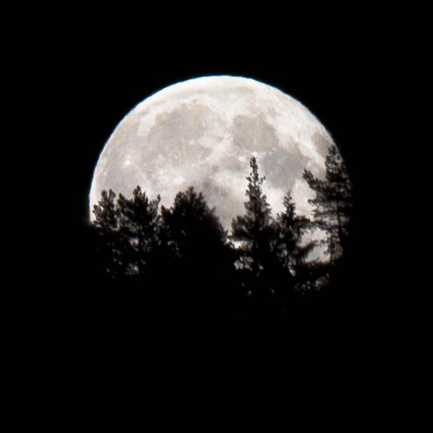 Moon over Kolsåstoppen II