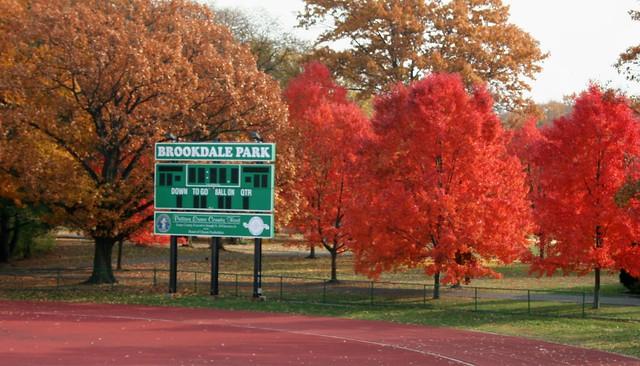 Brookdale Park Scoreboard : November 2010