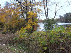 Walnut Creek Lake Raleigh NC 0488