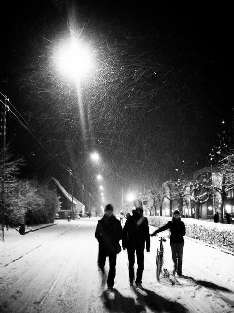 Que me han dicho que no nieva... (2)