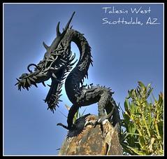 Taliesin West Night Tour