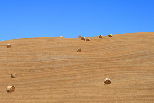 Straw bales on the horizon line