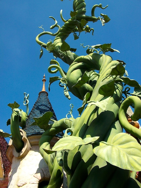 the bean stalk - photo #18