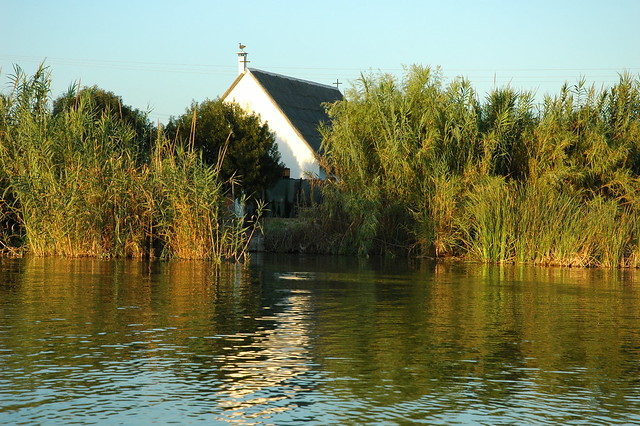 Barraca en la Albufera