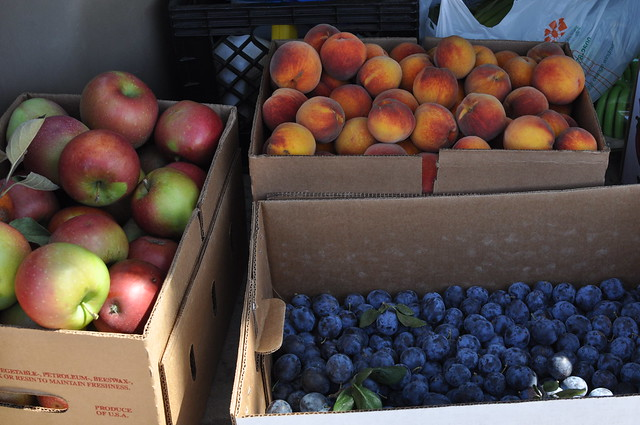 back of the car, filled with fruit