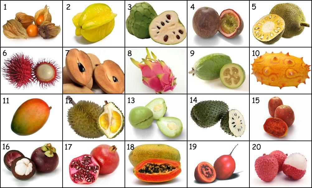 Fruits of the World (photo quiz) - By hellofromUK