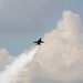 Small photo of Air Power Day 2010 866