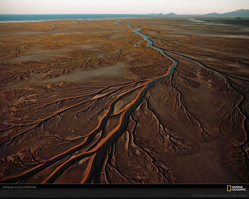Mudflat Remains, Mexico Pictures, Colorado River Delta Photos ...