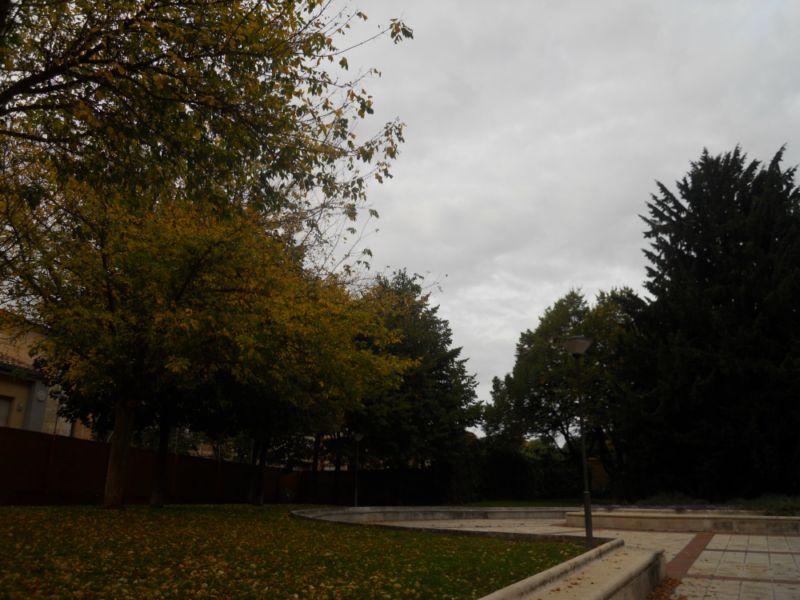 Patio en otoño