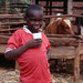 Small photo of Kenyan boy drinking milk