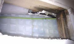 mold, wall, electrical wiring, plaster,