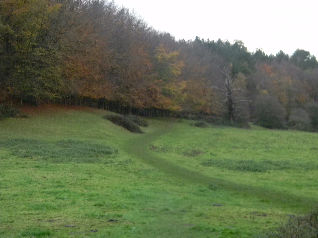 green path Edenbridge Town to Westerham