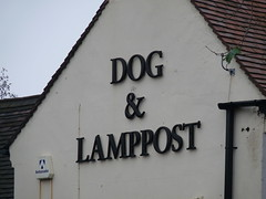 Dog & Lamppost - Brierley Hill