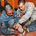 ANP recruits learn first aid from Stryker medic