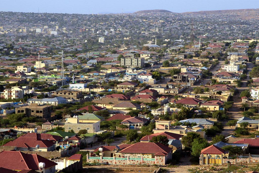 socotra tour - somaliland