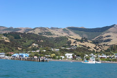 Akaroa Harbour wharf, Banks Peninsula, Canterbury, New Zealand