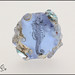 Calming Seahorse - Lampwork Glass Focal Bead by Clare Scott SRA