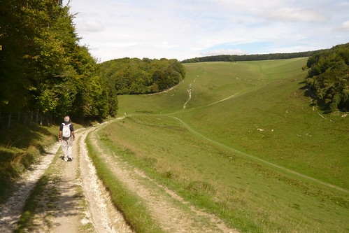 Arundel Path