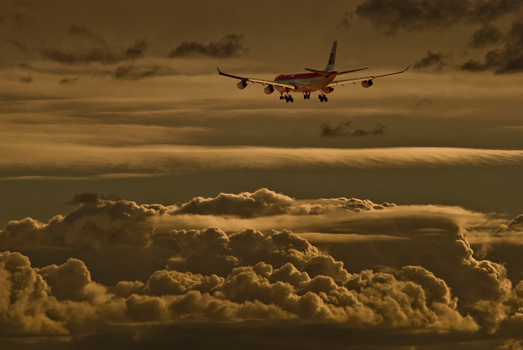Por las Nubes, autor DIDO
