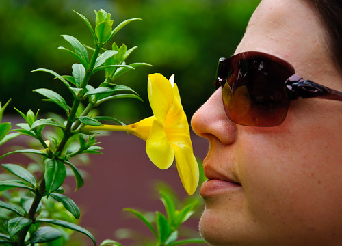 Floral Sents