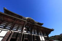 Buddha Hall / 大仏殿(だいぶつでん)