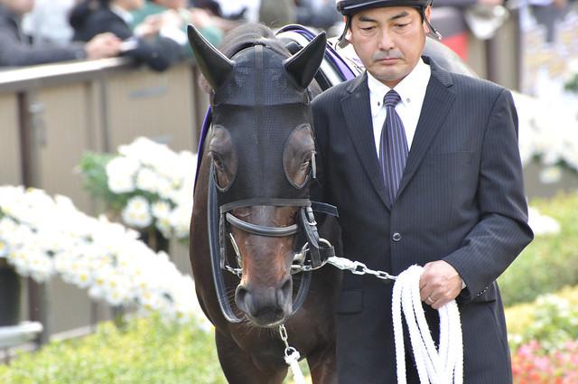 '10 Japan Cup ローズキングダム