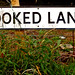 Small photo of Crooked Lane