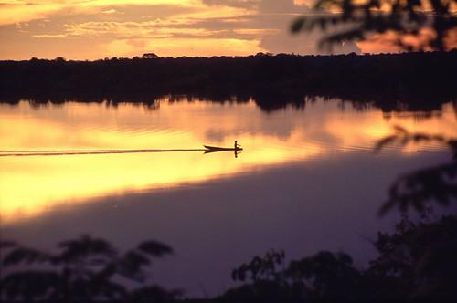 Parque Nacional de Jaú, Amazonas, Brasil