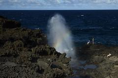 Rainbow at the Blowhole
