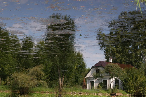 reflected house