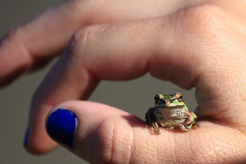 light girl tim hand space nail polish treefrog pacifictreefrog