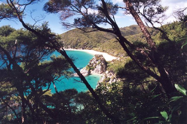 Sneaking a peek - Abel Tasman Coast Track