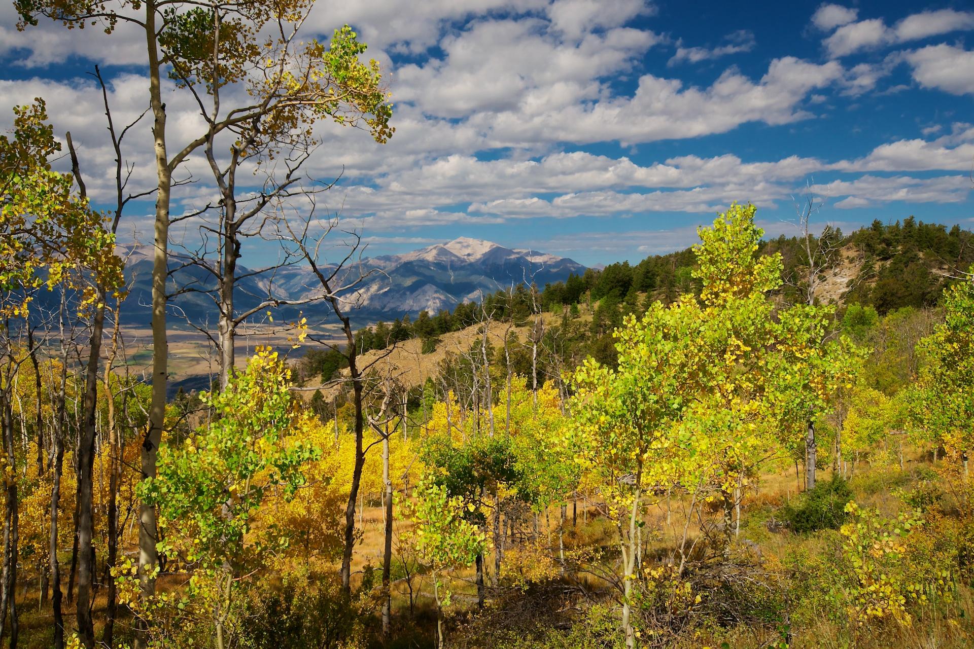 Mount princeton from aspen ridge san isabel national for Aspen ridge